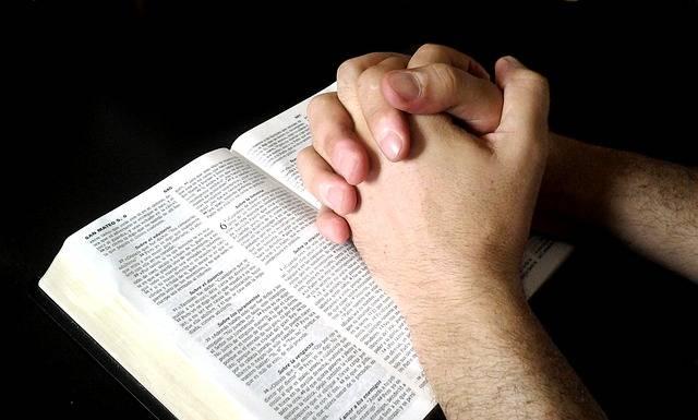 bijbel online lezen