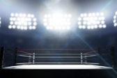 Maanantaina 15.8. Rion Olympialaisten nyrkkeilykehässä ottelevat maailman paras naisnyrkkeilijä Katie Taylor ja suomalainen Mira Potkonen. Kuva Istockphoto
